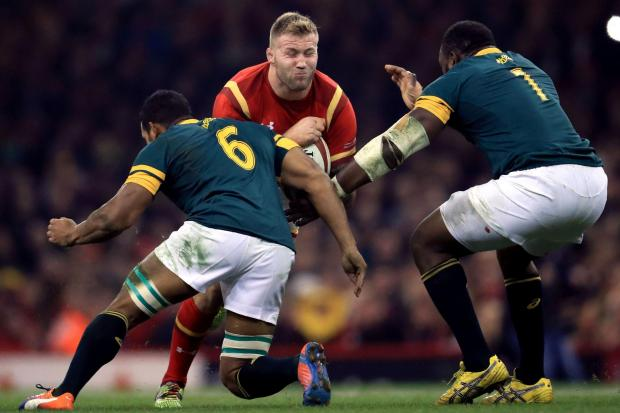 BRUISING BATTLE: Ross Moriarty is relishing another clash against South Africa with Wales