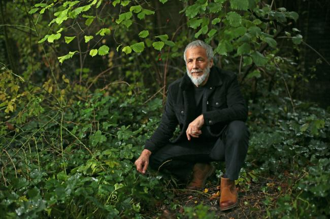 Cat Stevens to 'bring new life' to his breakthrough album with reworked version
