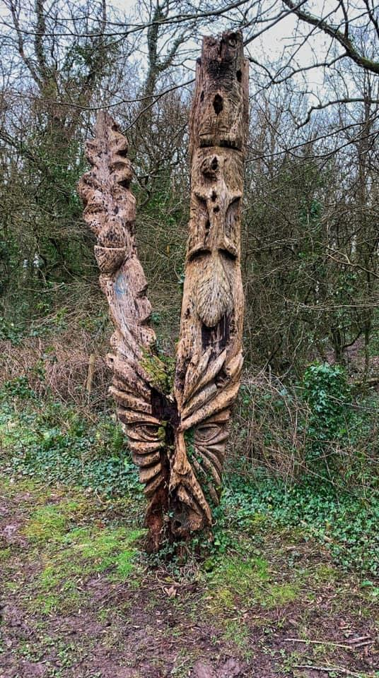 Penarth Times: INTERESTING: An unusual carving in Casehill Woods. Picture: Kathy Edwards