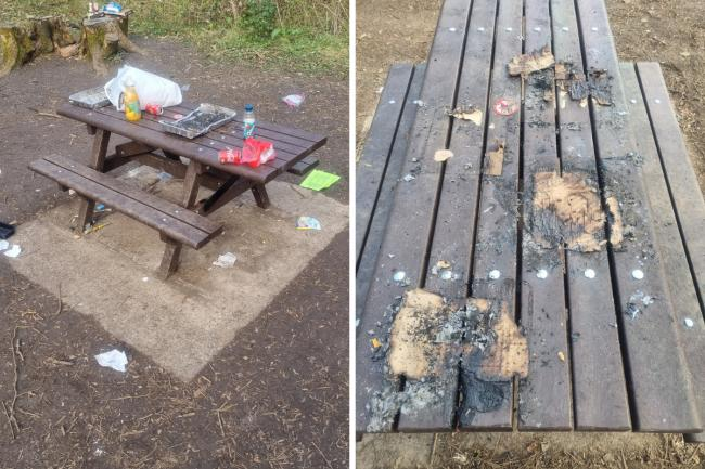 Benches were burnt by disposable barbecues used at Cosmeston Lakes Country Park. Litter was also left behind. Pictures: Vale of Glamorgan Council
