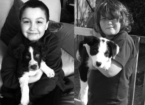HAPPY PUPPY OWNERS: (l-r) Master Idris Aydin, nine, with Zippy, nine weeks; and Master Evan Dyer, 10, with Bruno, 12 weeks