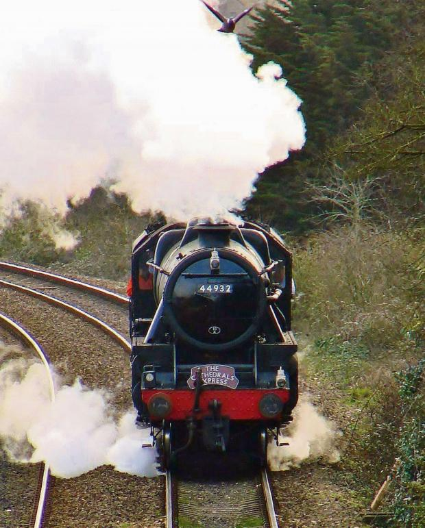 Penarth Times: CLASSIC: Sue Foley took this snap of  the Stanier Black 5 steam engine 44932 scaring a local dove as it raced towards Dinas Powys station (Pic: Sue Foley /Dinas Powys Pictures)