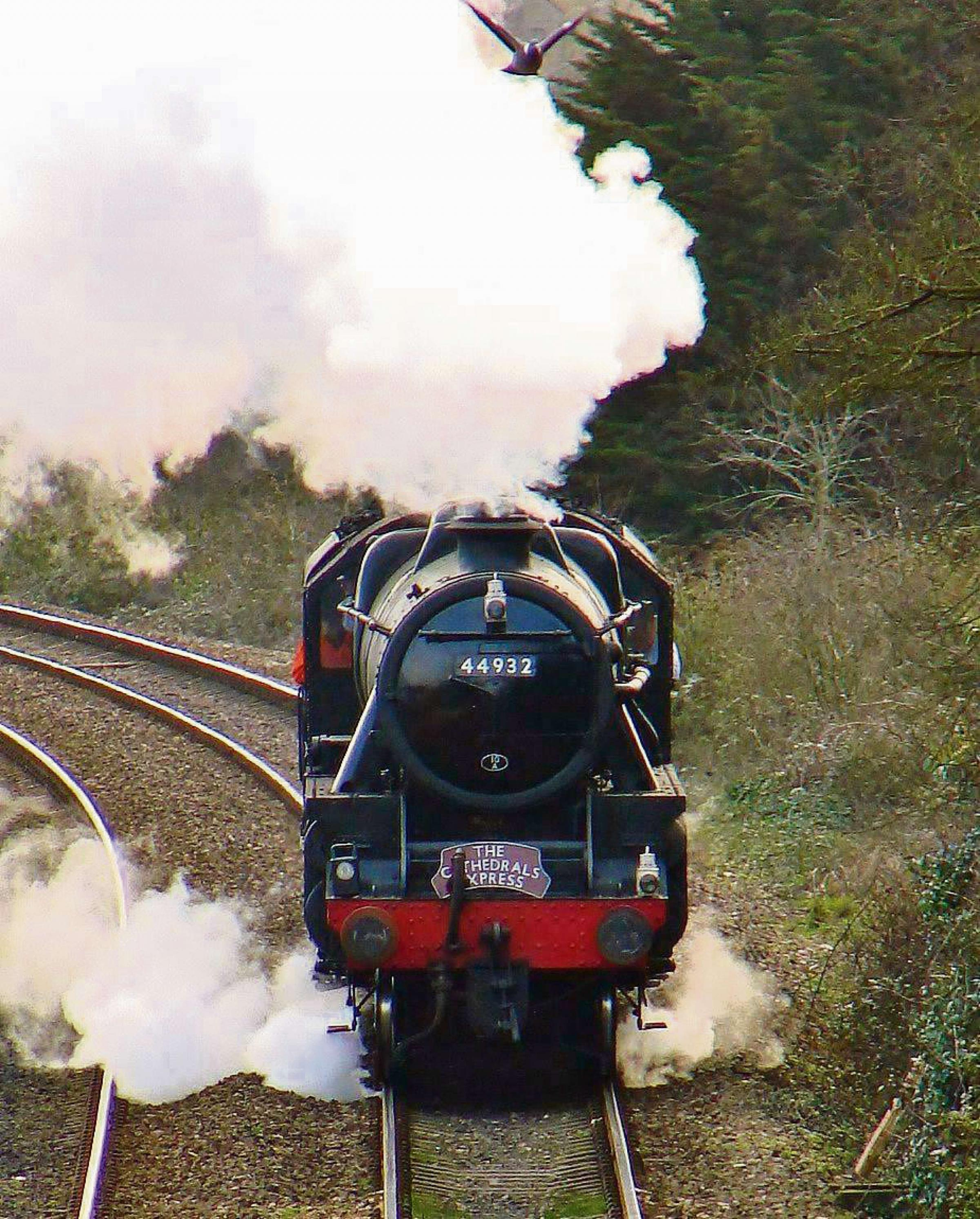 CLASSIC: Sue Foley took this snap of  the Stanier Black 5 steam engine 44932 scaring a local dove as it raced towards Dinas Powys station (Pic: Sue Foley /Dinas Powys Pictures)
