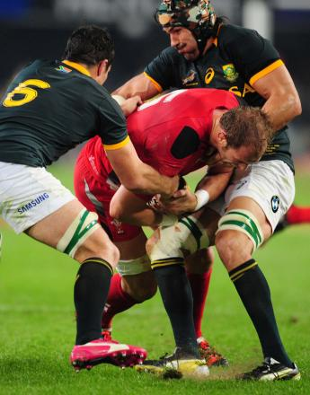 South Africa 38 Wales 16