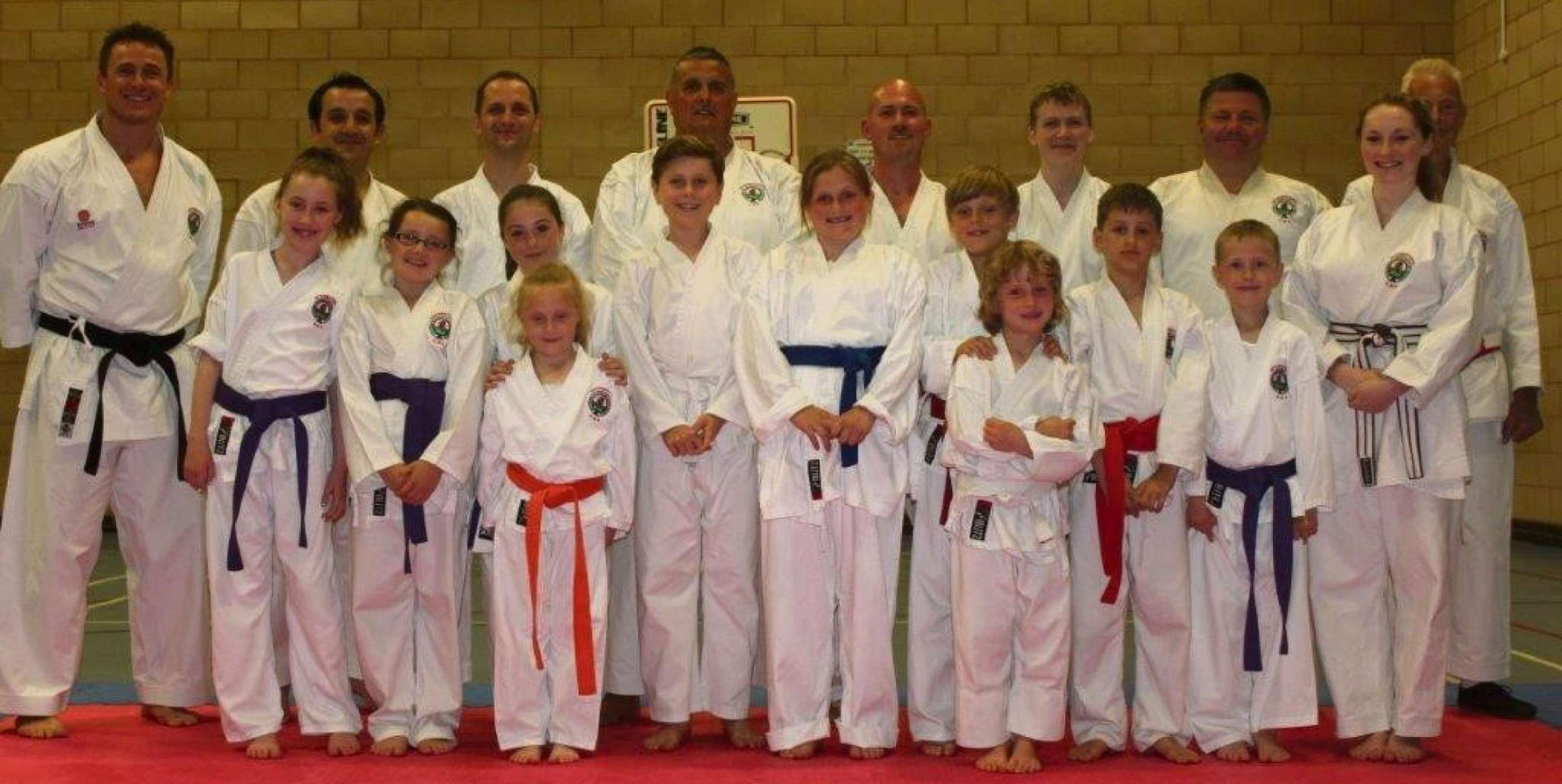 IMPROVING GRADES: Students from Penarth Association of Karate and Allied Disciplines achieved a series of successes during a grading event.