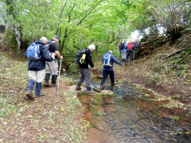 Penarth Ramblers on a previous walk
